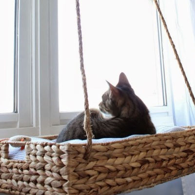 diy-cat-basket