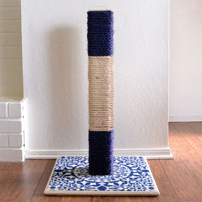 how to get a cat to scratch a scratching post