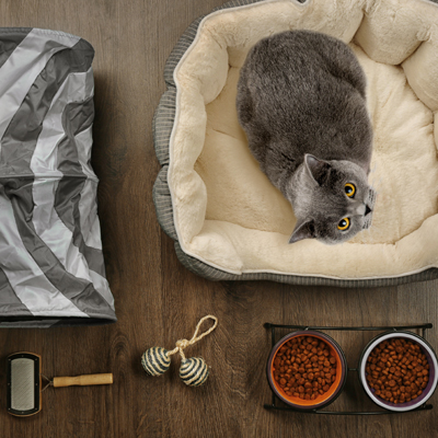 You may need to create a special space in your home for your cat