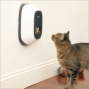 cat looking at a device on a wall with a camera