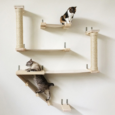 two cats on a wall mounted cat tree