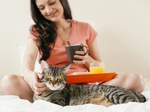 Woman scratching cat while having breakfast.