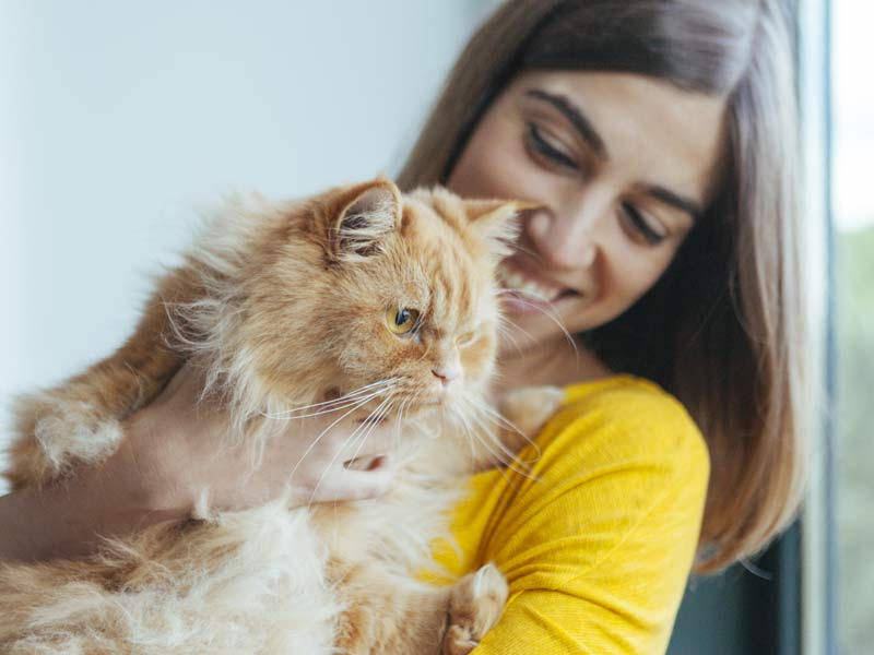 Thinking about adopting a cat? Woman holding orange cat in her arms