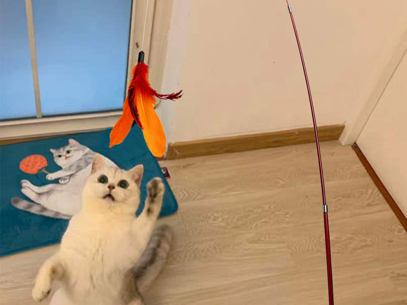 white cat jumping for fish pole toy